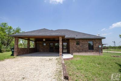 Mertzon Single Family Home For Sale: 107 E James Ave