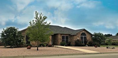 San Angelo Single Family Home For Sale: 4901 Scarlet Oak Dr
