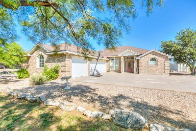 San Angelo Single Family Home For Sale: 11933 Knickerbocker Rd