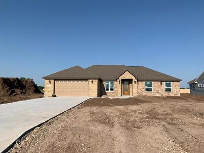 San Angelo Single Family Home For Sale: 5976 Bridlewood Court