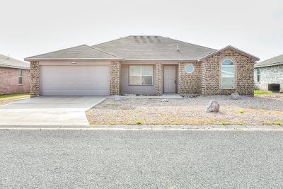 San Angelo TX Single Family Home For Sale: $179,000