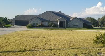 Christoval Single Family Home For Sale: 2622 Venado Dr