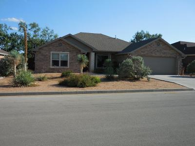 San Angelo Single Family Home For Sale: 1913 Pine Valley St