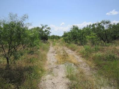 San Angelo Residential Lots & Land For Sale: 1330 26th St