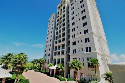 South Padre Island TX Condo/Townhouse For Sale: $885,000