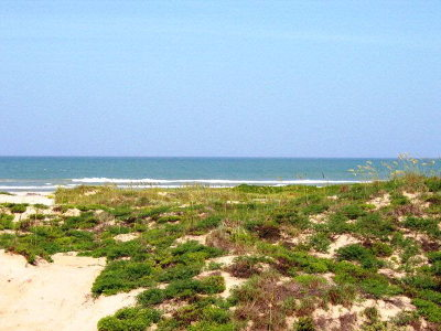 South Padre Island Residential Lots & Land For Sale: Tract 26 Highway 100