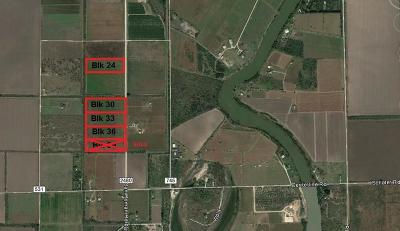 Los Fresnos, Bayview Residential Lots & Land For Sale: 40 Ac N San Roman