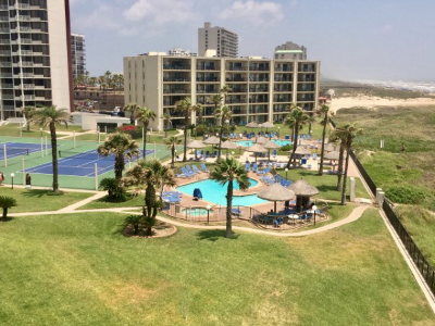 South Padre Island Condo/Townhouse For Sale: 402 Padre Blvd. #501