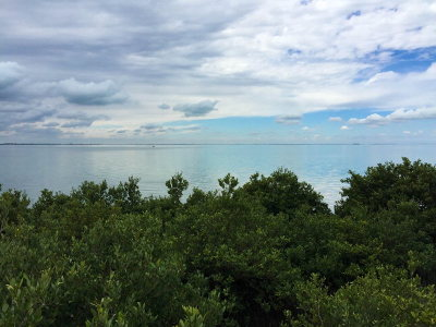 South Padre Island Residential Lots & Land For Sale: 4603 Laguna Blvd.