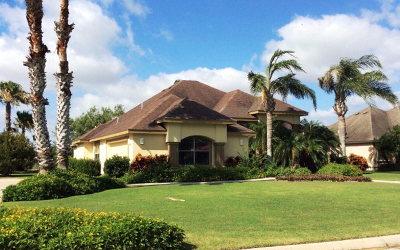 Laguna Vista Single Family Home For Sale: 36 Ocelot Trail