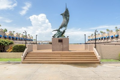 South Padre Island Condo/Townhouse For Sale: 425 Padre Blvd. #B-38