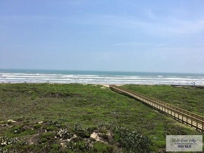 South Padre Island Condo/Townhouse For Sale: 1700 Gulf Blvd. #309