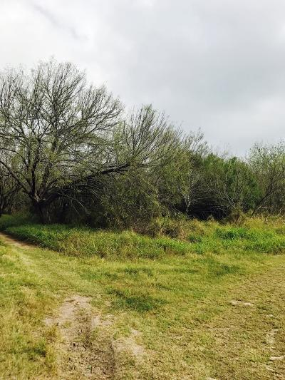 Brownsville Residential Lots & Land For Sale: Carmen Ave.