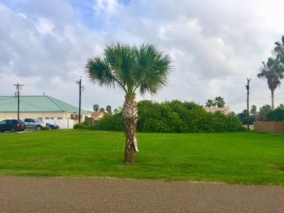 South Padre Island Residential Lots & Land For Sale: Lot 2, 3 W Atol St.