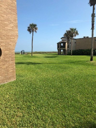 South Padre Island Condo/Townhouse For Sale: 1010 Padre Blvd. #107