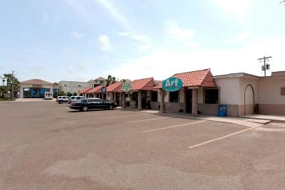 South Padre Island Commercial For Sale: 1817 Padre Blvd. #1817
