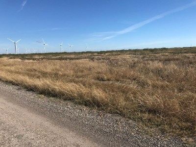 Los Fresnos, Bayview Residential Lots & Land For Sale: 20 Acres San Roman