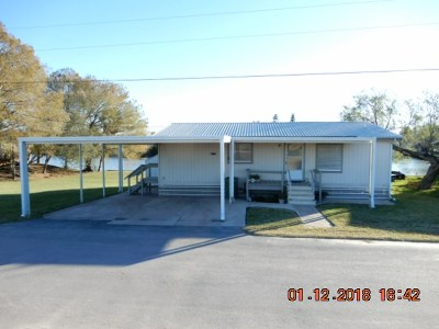 Los Fresnos Single Family Home For Sale: 14 S Tejas Dr.