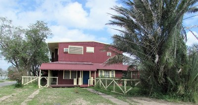 Los Fresnos Single Family Home For Sale: 110 W 6th Street