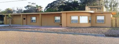 Port Isabel Single Family Home For Sale: 305 N Longoria