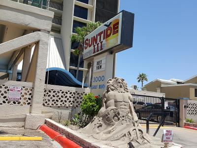 South Padre Island Condo/Townhouse For Sale: 3000 Gulf Blvd. #1008