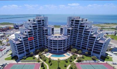 South Padre Island Condo/Townhouse For Sale: 1000 Padre Blvd. #708