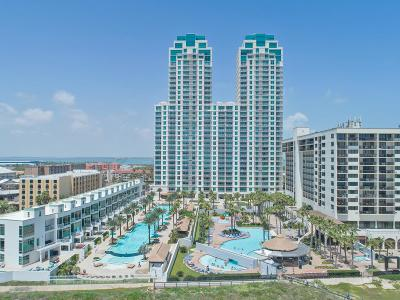 South Padre Island Condo/Townhouse For Sale: 310a Padre Blvd. #205