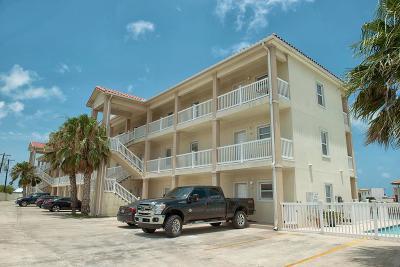 Port Isabel Multi Family Home For Sale: 1506c Highway 100