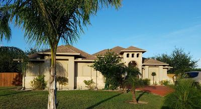 Bayview, Los Fresnos Single Family Home For Sale: 35224 Kretz Rd.
