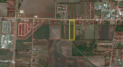 Los Fresnos, Bayview Residential Lots & Land For Sale: 15ac Highway 100