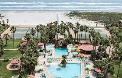 South Padre Island Condo/Townhouse For Sale: 500 Padre Blvd. #703
