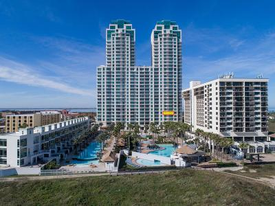 South Padre Island Condo/Townhouse For Sale: 310a Padre Blvd. #602