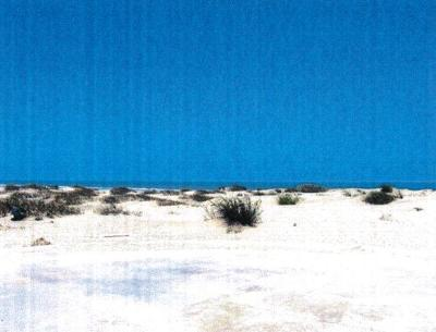 South Padre Island Residential Lots & Land For Sale: Park Rd 100-Ocean Blvd
