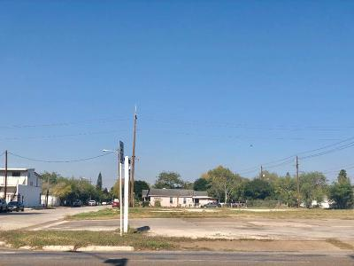 Brownsville Residential Lots & Land For Sale: 105 Palm Blvd