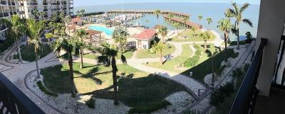 Port Isabel Condo/Townhouse For Sale: 301 E Houston St. #1303