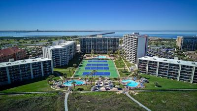 South Padre Island Condo/Townhouse For Sale: 404 Padre Blvd. #201