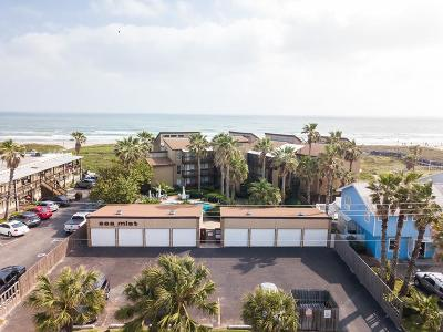 Bayview, Laguna Heights, Laguna Vista, Port Isabel, South Padre Island Condo/Townhouse For Sale: 3608 Gulf Blvd. #301