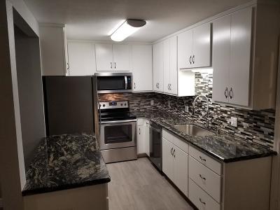 Port Isabel Single Family Home For Sale: 509 E Washington