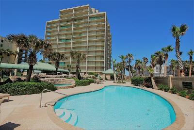 South Padre Island Condo/Townhouse For Sale: 906 Padre Blvd. #801