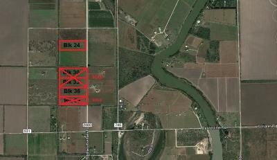Los Fresnos, Bayview Residential Lots & Land For Sale: Blk 36 N San Roman