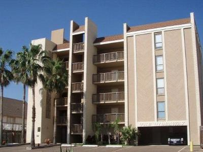 South Padre Island Condo/Townhouse For Sale: 114 E E Tarpon Street #102