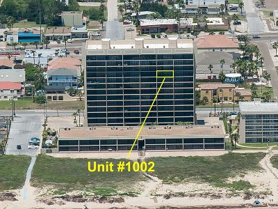 South Padre Island Condo/Townhouse For Sale: 2100 Gulf Blvd. #1002