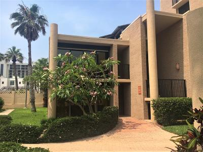 South Padre Island Condo/Townhouse For Sale: 112 Padre Blvd. #124