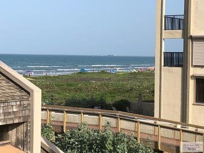 South Padre Island Condo/Townhouse For Sale: 2500 Gulf Blvd. #213