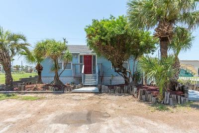 South Padre Island Single Family Home For Sale: 102 W Dolphin St.