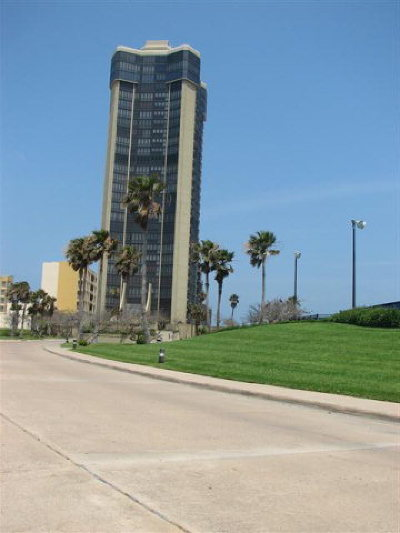 Bayview, Laguna Heights, Laguna Vista, Port Isabel, South Padre Island Condo/Townhouse For Sale: 334 S Padre Blvd. #2002