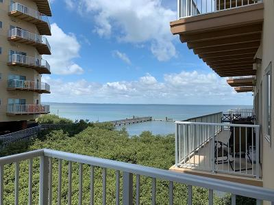 Bayview, Laguna Heights, Laguna Vista, Port Isabel, South Padre Island Condo/Townhouse For Sale: 201 W Capricorn Dr. #N103