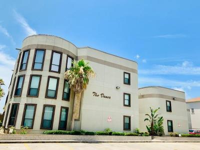 South Padre Island Condo/Townhouse For Sale: 125 E Georgia Ruth Dr. #H-205