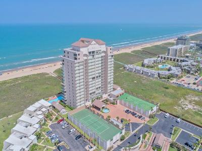 South Padre Island Condo/Townhouse For Sale: 1300 Gulf Blvd. #801