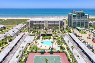 South Padre Island Condo/Townhouse For Sale: 900 Padre Blvd. #205